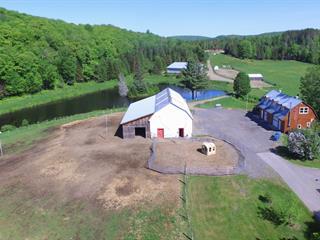Hobby farm for sale in Saint-Damien, Lanaudière, 3449, Chemin du Lac-Corbeau, 12862462 - Centris.ca