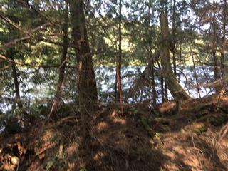 Lot for sale in Wentworth-Nord, Laurentides, Rue des Pruches, 22235814 - Centris.ca