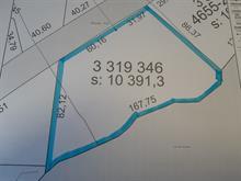 Lot for sale in Bois-Franc, Outaouais, Route  105, 21398168 - Centris.ca