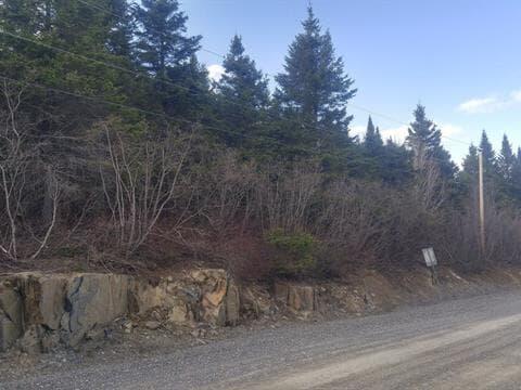 Terrain à vendre à Saint-André-de-Restigouche, Gaspésie/Îles-de-la-Madeleine, Rang  Saint-Victor, 25963733 - Centris.ca