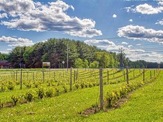 Hobby farm for sale in Ripon, Outaouais, 365, Route  321, 18803342 - Centris.ca