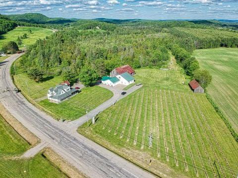 Fermette à vendre à Ripon, Outaouais, 365, Route  321, 18803342 - Centris.ca