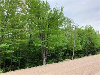 Terrain à vendre à Petite-Rivière-Saint-François, Capitale-Nationale, Chemin de la Sainte-Monique, 13081900 - Centris.ca