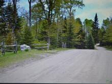 Land for sale in Nominingue, Laurentides, Chemin des Colibris, 28360145 - Centris.ca