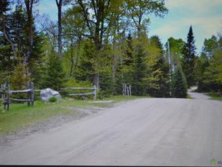 Terre à vendre à Nominingue, Laurentides, Chemin des Colibris, 28360145 - Centris.ca