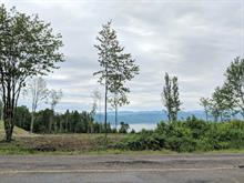 Lot for sale in Saint-Félix-d'Otis, Saguenay/Lac-Saint-Jean, 389, Vieux-Chemin, 13465376 - Centris.ca
