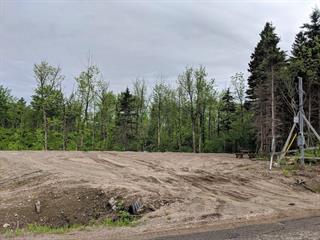 Terrain à vendre à Saint-Félix-d'Otis, Saguenay/Lac-Saint-Jean, 389, Vieux-Chemin, 13465376 - Centris.ca