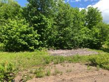 Terrain à vendre à Saint-Gabriel-de-Brandon, Lanaudière, Chemin du Lac-Hamelin, 18402144 - Centris.ca