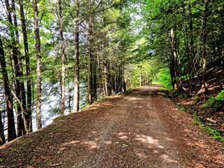 Land for sale in Arundel, Laurentides, Chemin de la Rouge, 12647449 - Centris.ca