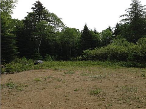 Terrain à vendre à Saint-Michel-des-Saints, Lanaudière, Chemin  Lagrange Est, 22209231 - Centris.ca