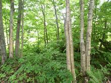 Terrain à vendre à Potton, Estrie, Chemin du Bosquet, 25887384 - Centris.ca