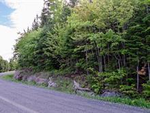 Terrain à vendre à Saint-Joseph-de-Coleraine, Chaudière-Appalaches, Chemin du Lac-Bisby, 21484643 - Centris.ca