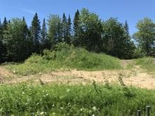 Lot for sale in Pont-Rouge, Capitale-Nationale, 95, Rue  Plante, 10965362 - Centris.ca