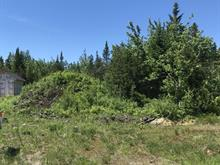 Lot for sale in Pont-Rouge, Capitale-Nationale, 38, Rue  Plante, 25822115 - Centris.ca