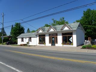 Commercial building for sale in Mont-Tremblant, Laurentides, 649 - 651, Rue  Labelle, 12687196 - Centris.ca