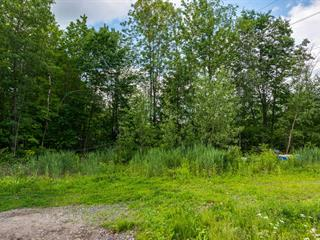 Terrain à vendre à Saint-Roch-de-l'Achigan, Lanaudière, Rang  Saint-Régis, 11828459 - Centris.ca