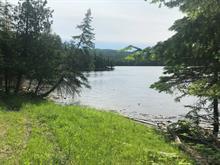 Terre à vendre à Low, Outaouais, Chemin  Farm, 25101508 - Centris.ca