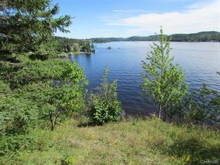 Lot for sale in Saint-Charles-de-Bourget, Saguenay/Lac-Saint-Jean, 1, Chemin  Côté, 14317144 - Centris.ca