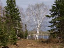 Lot for sale in Lamarche, Saguenay/Lac-Saint-Jean, 25, Rue du Domaine, 19785232 - Centris.ca