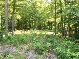 Lot for sale in Montebello, Outaouais, Chemin  Richelieu, 28825921 - Centris.ca