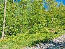 Terrain à vendre à Saint-Étienne-de-Bolton, Estrie, Rue de la Serpentine, 26901344 - Centris.ca
