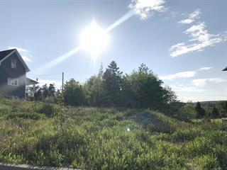 Terrain à vendre à Saguenay (Chicoutimi), Saguenay/Lac-Saint-Jean, 1590, Rue  Adam, 26143382 - Centris.ca