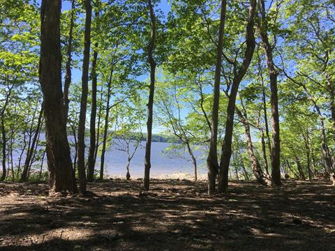 Lot for sale in Saint-Laurent-de-l'Île-d'Orléans, Capitale-Nationale, Chemin  Royal, 14903526 - Centris.ca