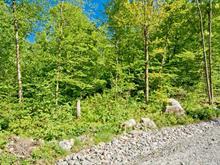 Terrain à vendre à Saint-Étienne-de-Bolton, Estrie, Rue de la Serpentine, 25414020 - Centris.ca