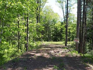 Lot for sale in Sainte-Julienne, Lanaudière, 3160, Rue  Pelletier, 28988316 - Centris.ca