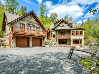 Maison à vendre à Mont-Tremblant, Laurentides, 233, Chemin des Castors, 9158508 - Centris.ca