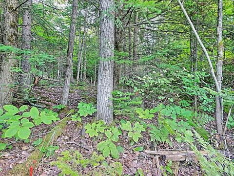 Lot for sale in Val-des-Monts, Outaouais, 464, Chemin  Blackburn, 22630723 - Centris