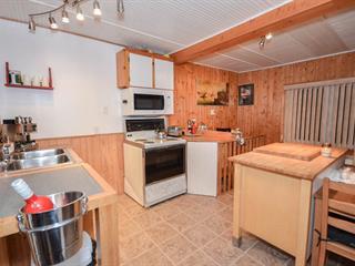 Cottage for sale in Fassett, Outaouais, 132, Rue  Principale, 24830882 - Centris.ca