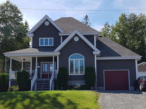 House for sale in Rouyn-Noranda, Abitibi-Témiscamingue, 64, Avenue  Victor, 28822022 - Centris