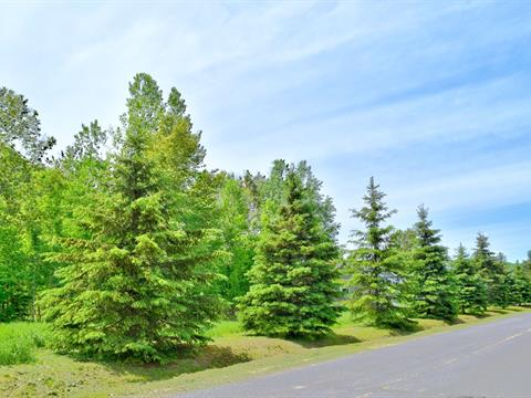 Lot for sale in Saint-Jean-de-Matha, Lanaudière, Chemin au Pied-de-la-Montagne, 25461599 - Centris