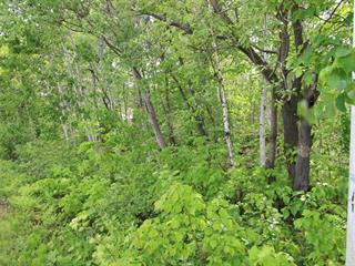 Terrain à vendre à Saint-Pacôme, Bas-Saint-Laurent, B, Rue  William, 22431620 - Centris.ca