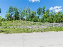 Lot for sale in Jacques-Cartier (Sherbrooke), Estrie, Rue du Chardonnay, 25223406 - Centris