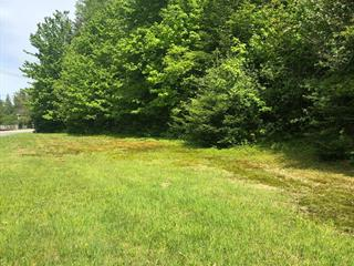 Lot for sale in Chénéville, Outaouais, Rue  Papineau, 24956258 - Centris.ca