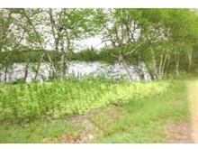 Terrain à vendre à Preissac, Abitibi-Témiscamingue, 13, Chemin des Riverains, 12638415 - Centris.ca