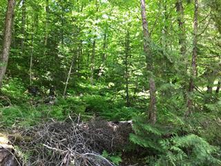 Land for sale in Lac-des-Plages, Outaouais, Chemin du Tour-du-Lac, 26379972 - Centris.ca