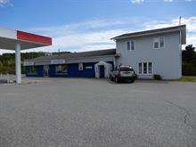 Bâtisse commerciale à vendre à Duhamel-Ouest, Abitibi-Témiscamingue, 263 - 265, Route  101 Sud, 25377738 - Centris