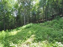 Terrain à vendre à Chelsea, Outaouais, Chemin de la Rivière, 18208625 - Centris