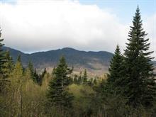 Terre à vendre à Val-Racine, Estrie, Chemin de Franceville, 25410678 - Centris.ca