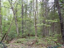 Terrain à vendre à Rivière-Rouge, Laurentides, Chemin du Lac-McCaskill, 20609001 - Centris.ca