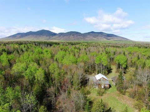 Terre à vendre à Val-Racine, Estrie, 1158Z, Chemin de Franceville, 22556080 - Centris.ca