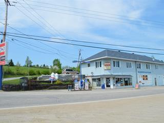 Bâtisse commerciale à vendre à Montpellier, Outaouais, 281 - 283, Route  315 Nord, 26725659 - Centris.ca