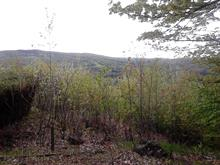 Lot for sale in Morin-Heights, Laurentides, Place de la Petite-Suisse, 12719813 - Centris