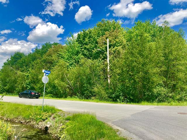 Terrain à vendre à Granby, Montérégie, 21, Rue  Dupuis, 20210967 - Centris.ca