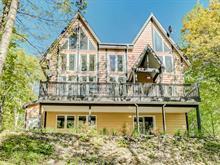 Maison à vendre à Notre-Dame-de-la-Salette, Outaouais, 282, Chemin du Domaine, 23229902 - Centris