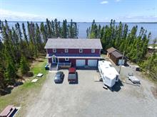 House for sale in Palmarolle, Abitibi-Témiscamingue, 939, Chemin des Linaigrettes, 28626021 - Centris.ca