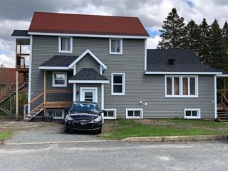 Quintuplex à vendre à Saint-Joseph-de-Coleraine, Chaudière-Appalaches, 437, Rue  Lehoux, 25568482 - Centris.ca
